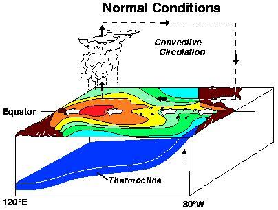 What is El Nino and La Nina? - ThoughtCo